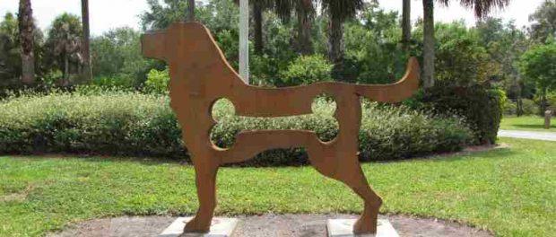 doggy park siracusa times