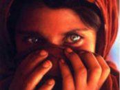 letture consigliate sotto il burqa di deborah ellis siracusa times