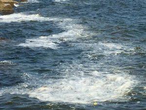 Mare inquinato Siracusa Times (7)