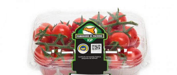 Pomodoro siracusa times