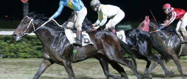 Sebastiano Guerrieri on L'Ombrone wins Premio Catania Siracusa, 15th january 2006 ph. Stefano Grasso