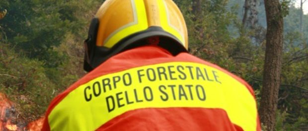 featured-corpo-forestale-incendio