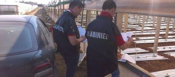 carabinieri_lavoro - siracusatimes