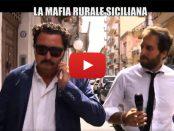 mafia-rurale-siciliana-servizio-iene-siracusa-times