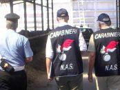 nas-carabinieri-repertorio