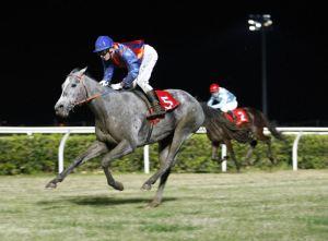 Equitazione Siracusa Times