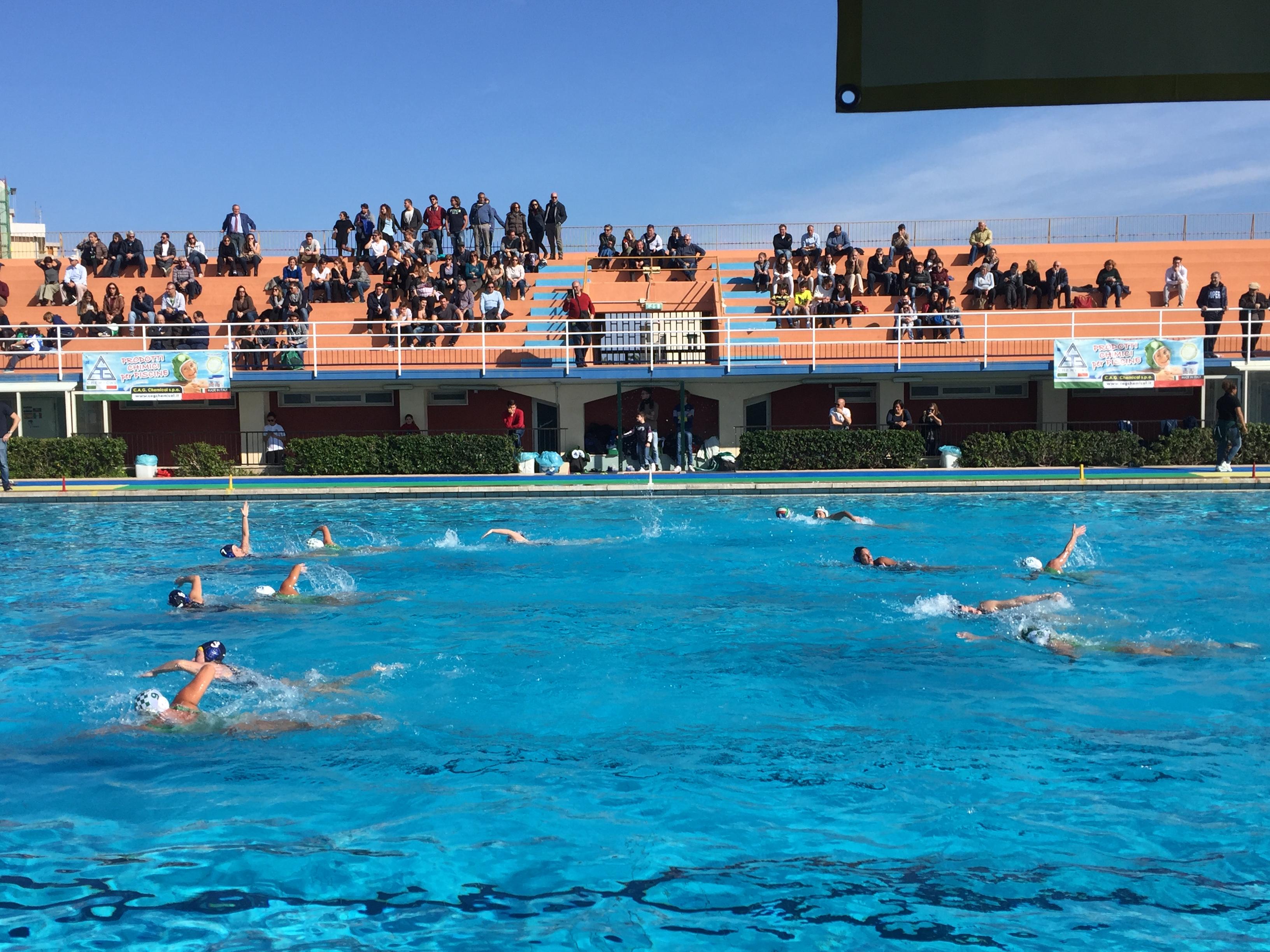 Siracusa l ortigia rosa esce sconfitta dalla piscina for Piscina zero9 roma