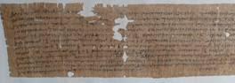 denuncia-museo-papiro-siracusa-times