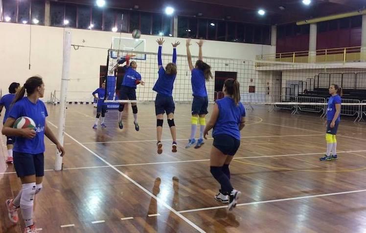 Siracusa pallavolo l 39 holimpia torna al lavoro per for Subito offerte lavoro catania