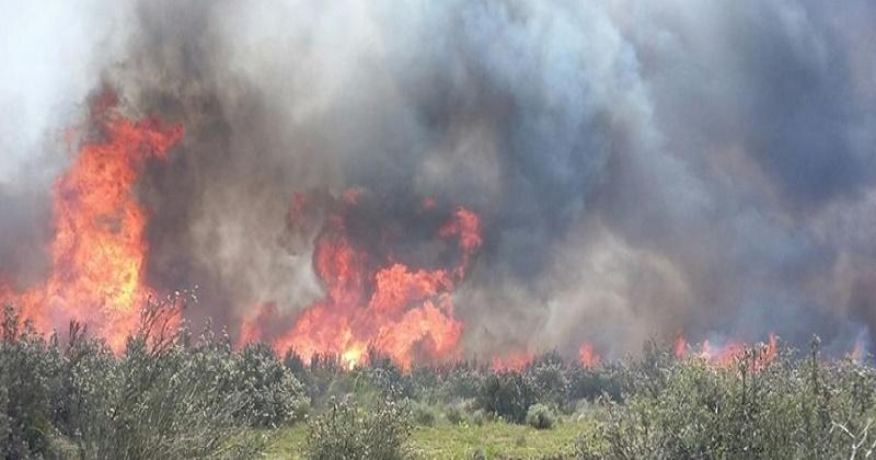"""Siracusa. Catasto incendi, Genovesi precisa: """"sarà ..."""